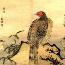 День библиографии «Современная литература Японии» @ Центральная районная библиотека им. А.С. Пушкина