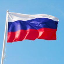 День патриотического воспитания «Флаг России, овеянный славой» @ Центральная районная библиотека им. А.С. Пушкина
