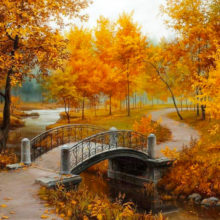 Час почитания «Пусть будет светлой осень жизни вашей!» @ Библиотека им. Е. Никонова