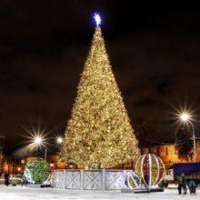 Новогодняя история «Босяцкое чудо: Горьковские елки» @ Библиотека им. А.И. Люкина